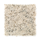 Exclusive Beauty in Apple Blossom - Carpet by Mohawk Flooring