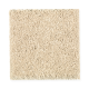 Woodcroft I in Goldrush - Carpet by Mohawk Flooring