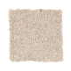 Tonal Chic I in Vanilla Steam - Carpet by Mohawk Flooring