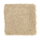 Beach Club IV in Carved Wood - Carpet by Mohawk Flooring