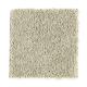 Famous Fair in Limewashed - Carpet by Mohawk Flooring