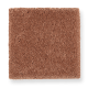 Pleasant Nature in Baked Amber - Carpet by Mohawk Flooring