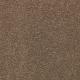 Striking Option in Timberlane - Carpet by Mohawk Flooring