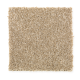 Forever Famous in Cashmere - Carpet by Mohawk Flooring