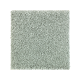 Nature's Appeal I in Seascape - Carpet by Mohawk Flooring