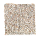 Andantino in Aspen Bark - Carpet by Mohawk Flooring