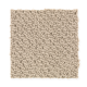 Peaceful Harmony in Quiet Lullaby - Carpet by Mohawk Flooring