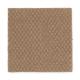 Thompson Square in Cedar Beige - Carpet by Mohawk Flooring