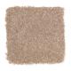 Beach Club IV in Dried Sage - Carpet by Mohawk Flooring