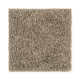 Stylish Silhouette in Dry Twig - Carpet by Mohawk Flooring