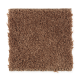 Living Legacy in Copper Penny - Carpet by Mohawk Flooring