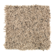 Casual Glamour I in Basketry - Carpet by Mohawk Flooring