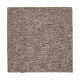 Treasure Valley in Poised Taupe - Carpet by Mohawk Flooring