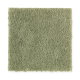 Everyday Living in Spring Grass - Carpet by Mohawk Flooring