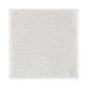 Opulent Appeal in Heirloom - Carpet by Mohawk Flooring