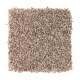 Soft Dimensions I in Amber Sand - Carpet by Mohawk Flooring