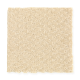 Greenhurst in Medallion - Carpet by Mohawk Flooring