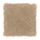 Sensible Style I in Spiced Tea - Carpet by Mohawk Flooring