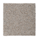 Calming State in Newspirit - Carpet by Mohawk Flooring