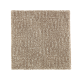 Natural Treasure in Urban Taupe - Carpet by Mohawk Flooring