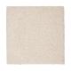 Splendid Freedom in Dovetail - Carpet by Mohawk Flooring