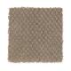 Soft Cheer in Velvet Brown - Carpet by Mohawk Flooring