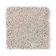 Emerging Image III in Birdbath Tan - Carpet by Mohawk Flooring