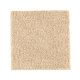 Casual Culture in Maple Tint - Carpet by Mohawk Flooring
