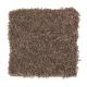 American Splendor III in Carob - Carpet by Mohawk Flooring