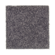 Eternal Allure I in Flannel Gray - Carpet by Mohawk Flooring