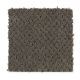 Unification in Charcoal - Carpet by Mohawk Flooring