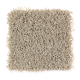 Bright Opportunity in Mushroom Cap - Carpet by Mohawk Flooring