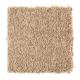 Sassy Arrangement in Glazed Donut - Carpet by Mohawk Flooring