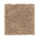 Famous Fair in Rich Maple - Carpet by Mohawk Flooring