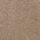 Amazing Approach in Toasty Pecan - Carpet by Mohawk Flooring