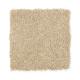 Beautiful Desire II in Autumn Glow - Carpet by Mohawk Flooring