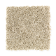 High Seas in Natural Fiber - Carpet by Mohawk Flooring