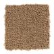 Sharp Composition in Tiki Hut - Carpet by Mohawk Flooring