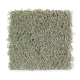 Bright Opportunity in Botanical - Carpet by Mohawk Flooring