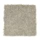 Comfortable Creation II in Galvanized - Carpet by Mohawk Flooring