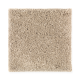 Style Objective in Soft Bamboo - Carpet by Mohawk Flooring