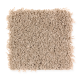 Creative Charm in Frosty Spice - Carpet by Mohawk Flooring
