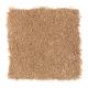 Exclusive Content II in Aurora - Carpet by Mohawk Flooring