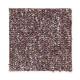 Memorabilia in Garden Red - Carpet by Mohawk Flooring