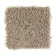 Bright Opportunity in Safari Tan - Carpet by Mohawk Flooring