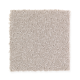 Intriguing Design in Snowdove - Carpet by Mohawk Flooring