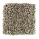 Subtle Influence II in Almond - Carpet by Mohawk Flooring