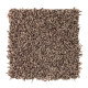 Soft Dimensions I in Stratford Brown - Carpet by Mohawk Flooring