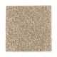 Hampton Isle in Water Chestnut - Carpet by Mohawk Flooring