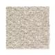 Sun River in Sumac - Carpet by Mohawk Flooring